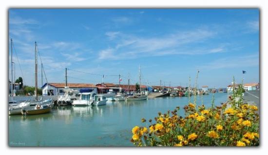 le chenal d'accès au port de Saint-Trojan