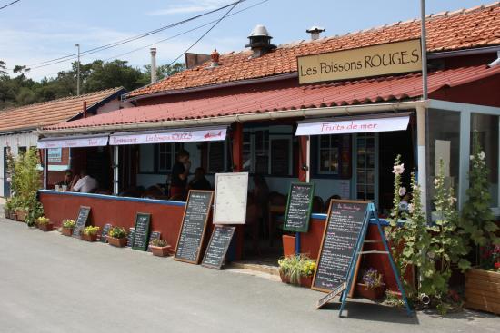 Restaurant côté port